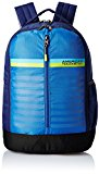 American Tourister 28 Ltrs Blue Casual Backpack (AMT PING BACKPACK 01 - BLUE)