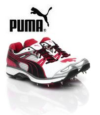 Puma Sports Shoes Upto 70% OFF Starts Rs.919 From Myntra.com